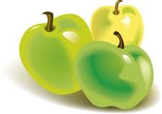 Manzanas ilustración del vector