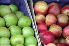 Manzanas foto de archivo libre de regalías