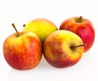 Manzanas aisladas en el fondo blanco Fotografía de archivo libre de regalías