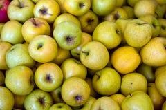 Manzanas amarillas Imágenes de archivo libres de regalías