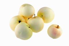Manzanas amarillas ecológicas Imagenes de archivo