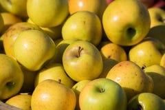 Manzanas amarillas en el mercado Fotos de archivo