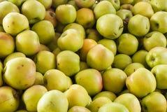 Manzanas amarillas en el soporte de la granja Fotografía de archivo
