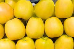 Manzanas amarillas en filas Foto de archivo