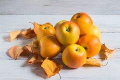 Manzanas amarillas en un fondo de madera blanco, adornado con las hojas de otoño amarillas fotos de archivo libres de regalías