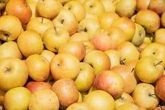 Manzanas amarillas frescas en un mercado agrícola del aire abierto del granjero, comida sana estacional imágenes de archivo libres de regalías
