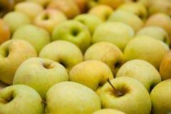 Manzanas amarillas frescas y dulces Foto de archivo