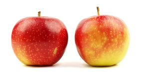 Manzanas amarillas rojas aisladas en blanco Fotos de archivo libres de regalías