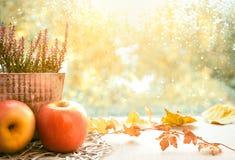 Manzanas, brezo y hojas de otoño en un tablero de ventana en una d lluviosa Fotografía de archivo libre de regalías