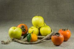 Manzanas, caquis, mandarina Imagen de archivo libre de regalías