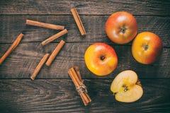 Manzanas con cinamomo Imagen de archivo