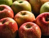 Manzanas con descensos del agua Foto de archivo libre de regalías