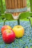 Manzanas con la prensa vieja de la fruta Imagen de archivo