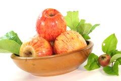 Manzanas con las hojas Fotos de archivo libres de regalías