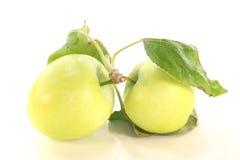 Manzanas con las hojas Fotos de archivo
