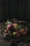 Manzanas con las hojas Fotografía de archivo