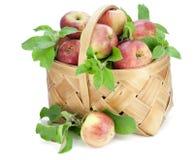 Manzanas con las hojas en cesta Fotos de archivo