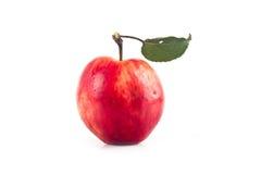 Manzanas con las hojas en un fondo blanco Fotos de archivo