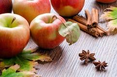 Manzanas con las hojas, los palillos de canela, el anís de estrella y la licencia de otoño Foto de archivo