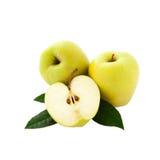 Manzanas con las hojas verdes Foto de archivo libre de regalías