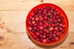 Manzanas de cangrejo rojas fotos de archivo libres de regalías