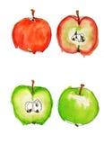 Manzanas de la acuarela Imagen de archivo libre de regalías