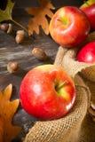 Manzanas de la caída Fotos de archivo
