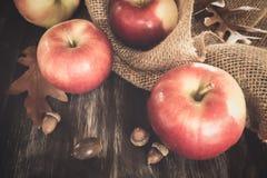 Manzanas de la caída Imagen de archivo libre de regalías