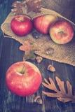 Manzanas de la caída Fotografía de archivo libre de regalías