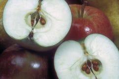 Manzanas de la fruta Foto de archivo