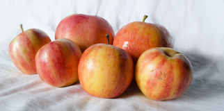 Manzanas de la fruta fresca Imagenes de archivo
