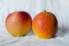 Manzanas de la fruta fresca Fotos de archivo libres de regalías