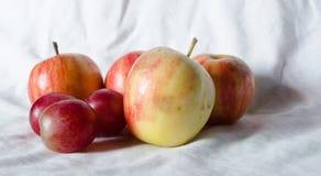 Manzanas de la fruta fresca Fotografía de archivo libre de regalías