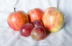 Manzanas de la fruta fresca Fotos de archivo