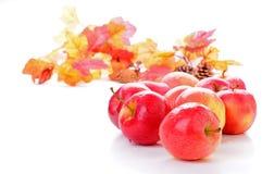 Manzanas de la gala Fotos de archivo