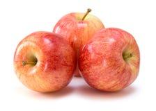 Manzanas de la gala imagenes de archivo