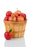 Manzanas de la gala en una cesta fotografía de archivo