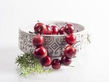 Manzanas de la Navidad Foto de archivo libre de regalías