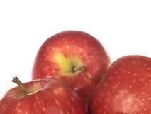 Manzanas de la señora rosada rojo Foto de archivo libre de regalías