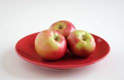 Manzanas de McIntosh en la placa roja Foto de archivo libre de regalías