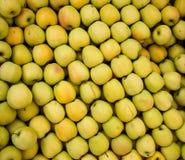 Manzanas de oro Foto de archivo libre de regalías