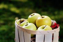 Manzanas de oro en una cesta de fruta imagenes de archivo