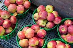 Manzanas del lobo en una cesta Fotografía de archivo libre de regalías