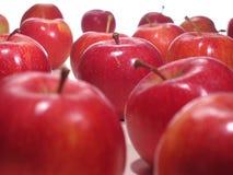 Manzanas deliciosas Imágenes de archivo libres de regalías