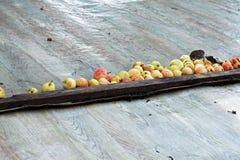 Manzanas dirigidas Imagen de archivo