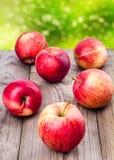 Manzanas dispersadas Foto de archivo libre de regalías