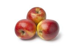 Manzanas dulces rojas Foto de archivo