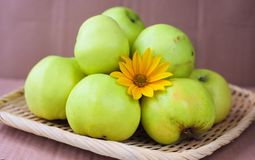Manzanas ecológicas verdes Fotos de archivo libres de regalías