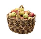 Manzanas en cesta tejida Fotos de archivo libres de regalías