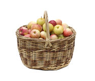 Manzanas en cesta tejida Imagen de archivo libre de regalías